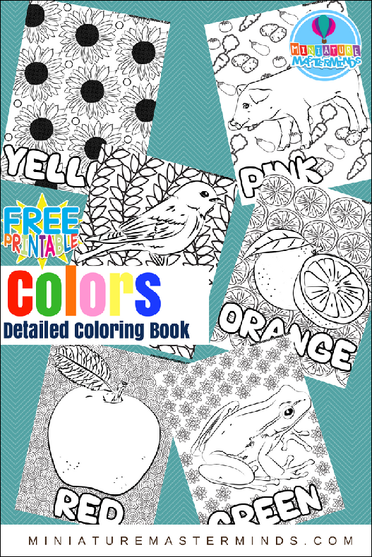 Early Learning: Exploring Colors